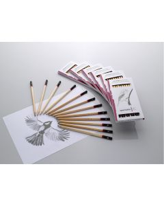Spectrum Graphite Pencil Packs
